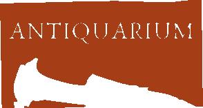 Archeologia Spilamberto