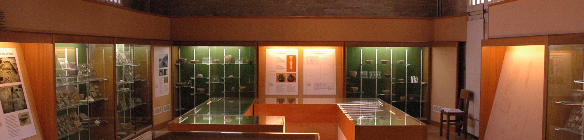 Il museo si racconta Archeo40 – i tesori di spilamberto in 40 anni di scavi archeologici